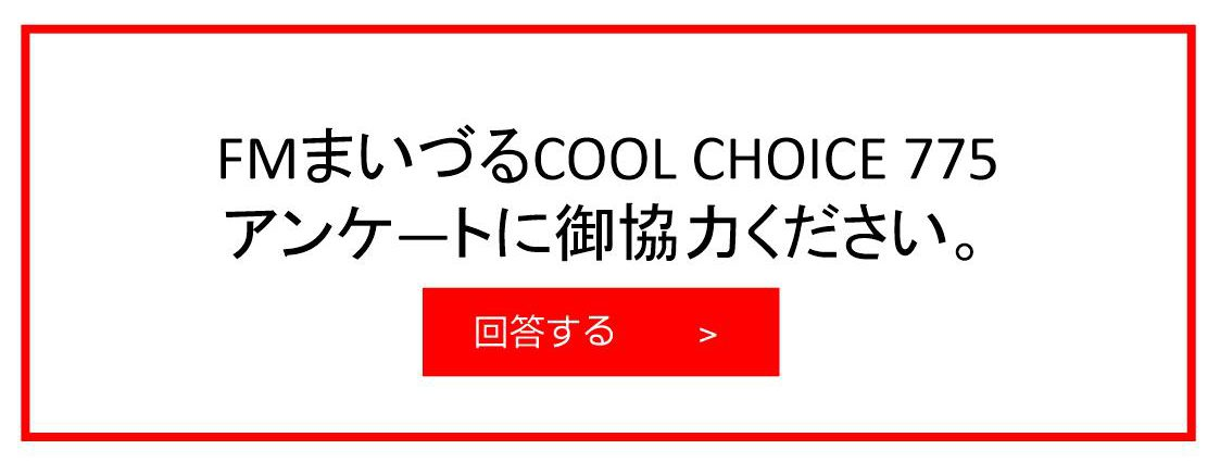 COOL CHOICE 775 WEBアンケート